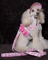 easy-on dog harness outfit fashions from udogu